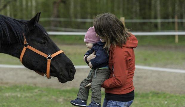 Jedinstvena metoda lečenja dece u dodiru sa životinjama daje odlične rezultate / Foto Thinkstock